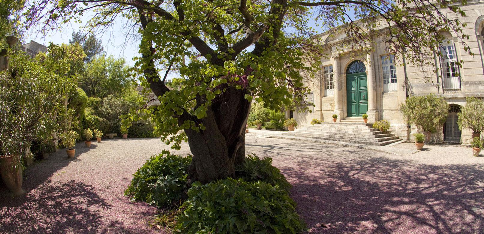 Abbaye st André Villeneuve lez Avignon @ Maynard