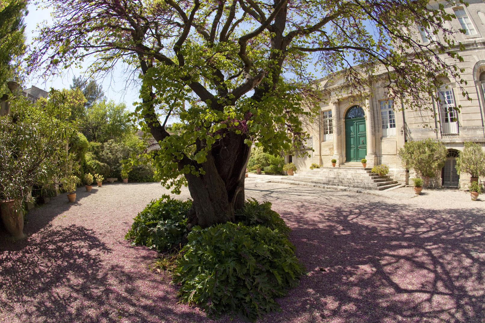 Gelassenheit und Besinnung im Garten der Abtei Saint-André