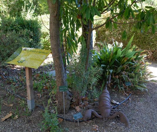 Der botanische Weg Uchaux-Sérignan