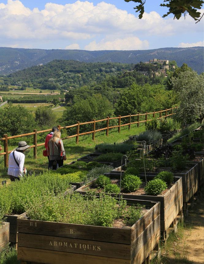 Garten - Domaine de la Citadelle - Luberon